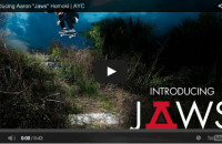 Asphalt Yacht Club Welcomes Jaws